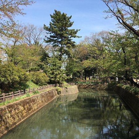 城之内公園, photo1.jpg