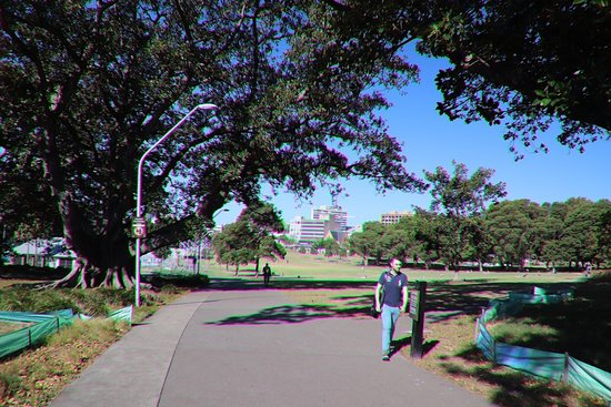 Prince Alfred Park