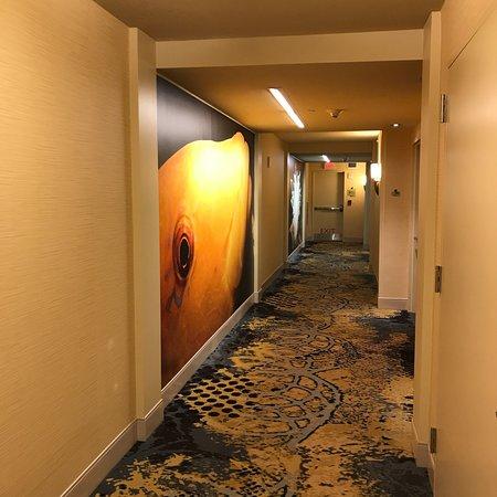 Hilton Garden Inn Atlanta Downtown: photo2.jpg