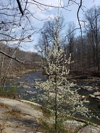 Ellicott City, MD: April hike Switchback