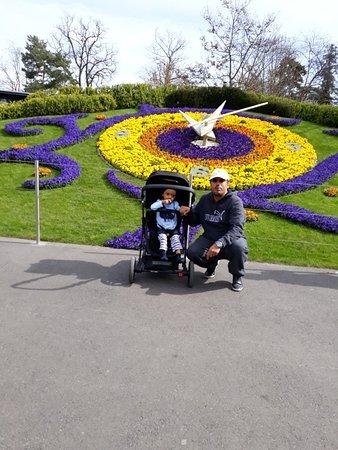 Flower Clock: 20180414_110206_large.jpg