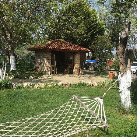 Geyre, Turkey: Restaurant bahçesinden görünüm