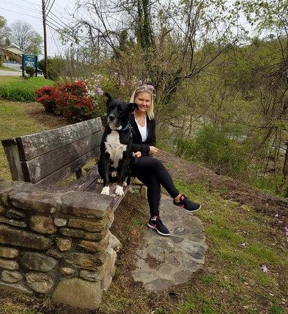 Chimney Rock, Kuzey Carolina: IMG_20180408_205227_956_large.jpg