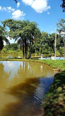 Santa Ernestina São Paulo fonte: media-cdn.tripadvisor.com