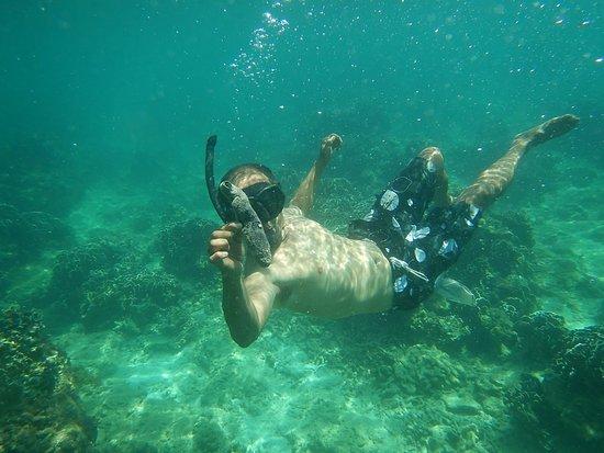 Summer Breeze Inn Hotel: Manit snorkling.
