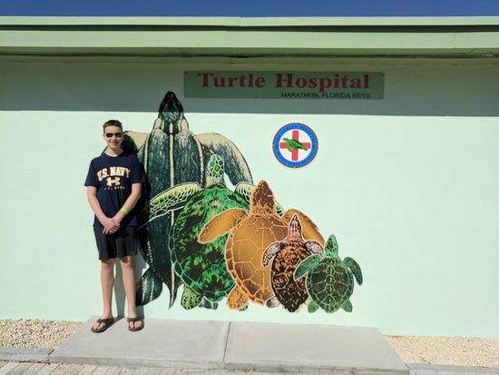 The Turtle Hospital Photo