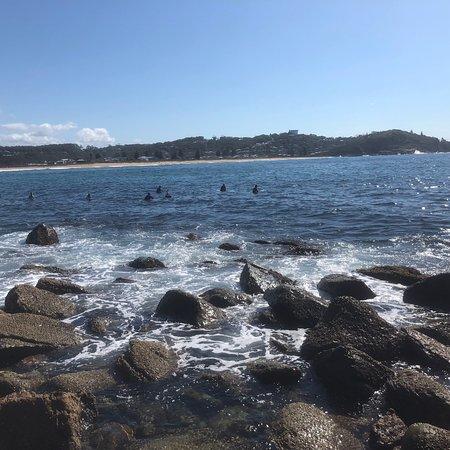 Central coast surf academy