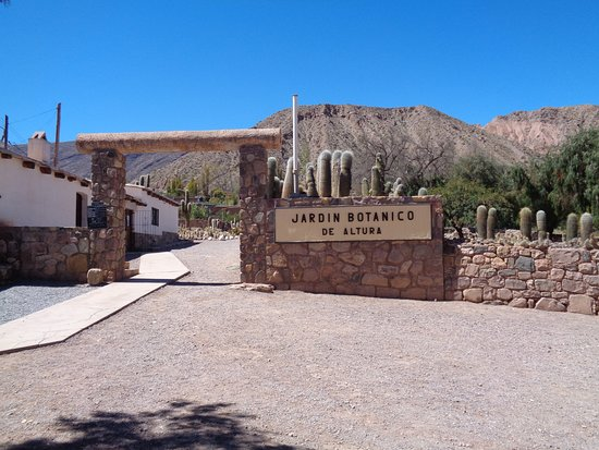 Img 20180401 wa0061 picture of jardin botanico for Valor entrada jardin botanico