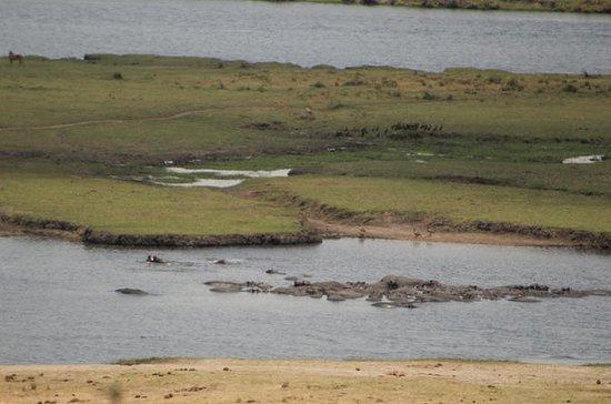 Ihanga Tented Camping Safari