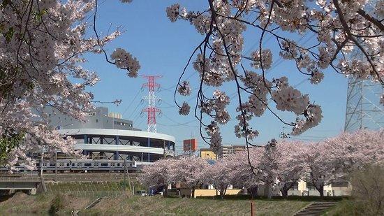 Kitakashiwa Furusato Park