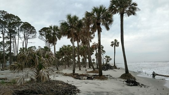 Hunting Island State Park Campground Photo