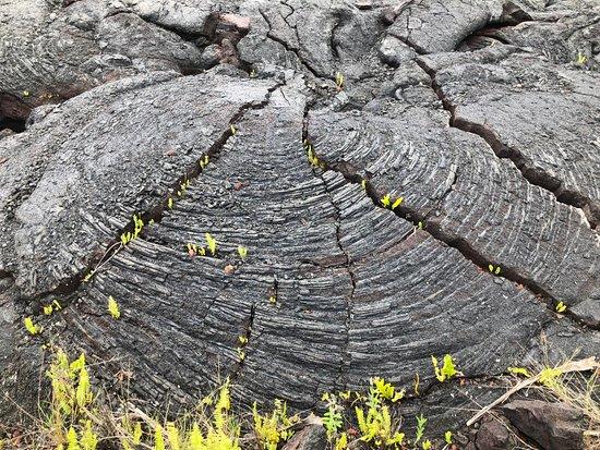 Pahoa, Hawaï: Magnificent lava formation