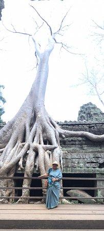 David Angkor Guide - Private Tours: ta prohm, david's photo skills