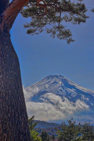 忍野村, 山梨県, 二十曲峠:富士山と松