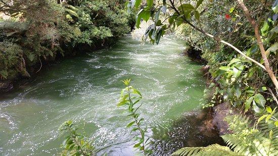 Okere Falls, ניו זילנד: 20180415_115937_large.jpg