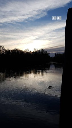 Silea, Italy: IMG_20180415_091619_648_large.jpg