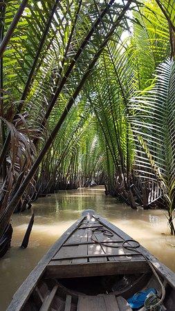 Innoviet Travel: Sampan among the mangrove swamps