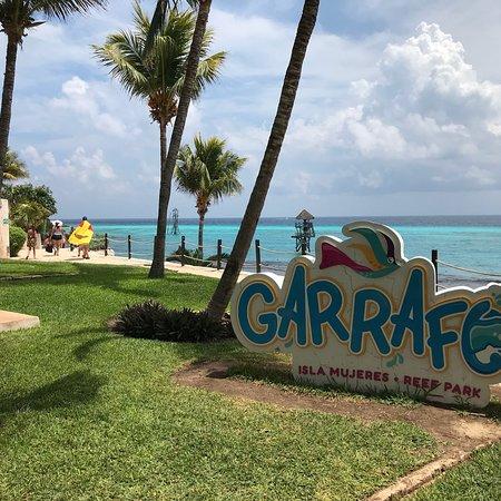 Garrafon Natural Reef Park: photo1.jpg