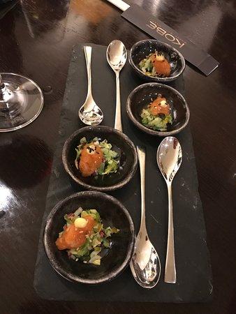 KOBE Steak Grill Sushi Restaurant Václavské nám.: Taster on the house, salmon and cucumber salsa