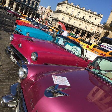 Vintage Cars Tours: photo6.jpg