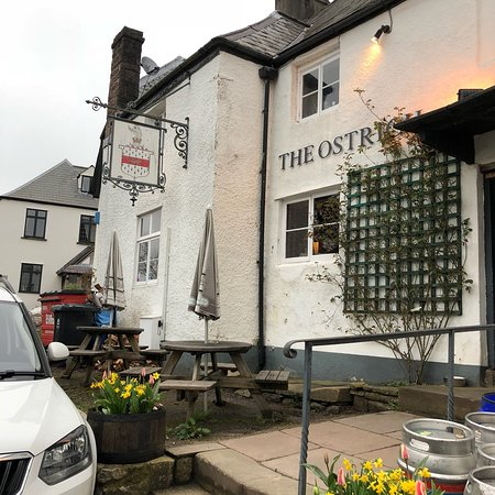 Newland, UK: Our visit for dinner at the Ostrich