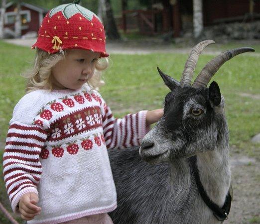 Merikarvia, Finnország: Lasten maatila