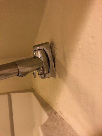 체이스 스위트 호텔 탬파 사진
