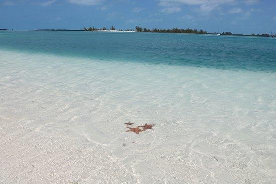 Eden Village Cayo Largo: Punta Sirena