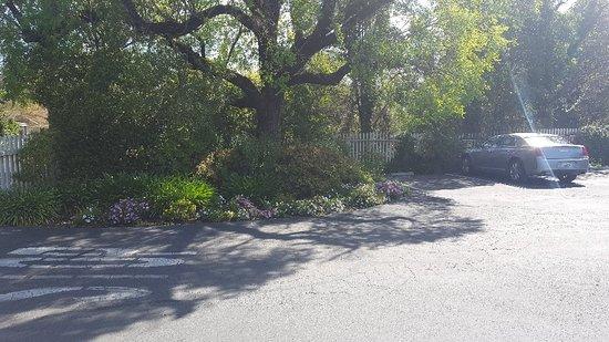 MacArthur Place - Sonoma's Historic Inn & Spa: 20180408_111420_large.jpg