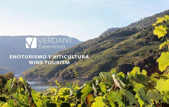 Excursiones Enoturisticas Por Galicia Wine Tours In Galicia