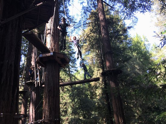 Mount Hermon, CA: Many areal obstacles