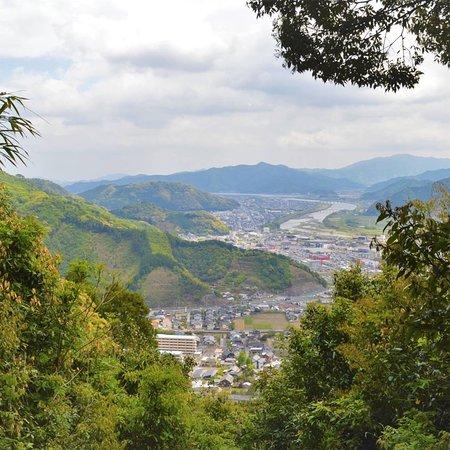 Saiki, اليابان: 栂牟礼山。椿がきれい。
