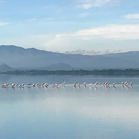 Lake Elementaita, Kenya: Lake