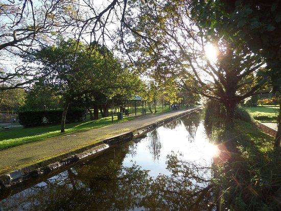 Tavistock Canal