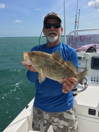 Ramrod Key, Floride : Grouper off the shallow wrecks