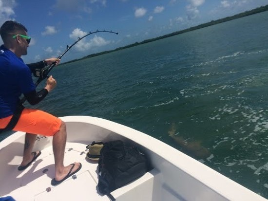 Mile Marker 27 Fishing Charters: He's close now!