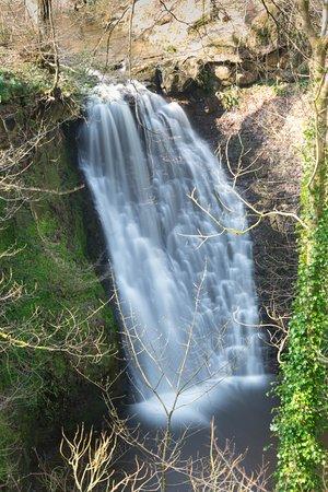 Falling Foss Tea Garden and Waterfall: Falling Foss Waterfall
