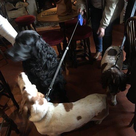 Lovely dog friendly pub with good Sunday carvery