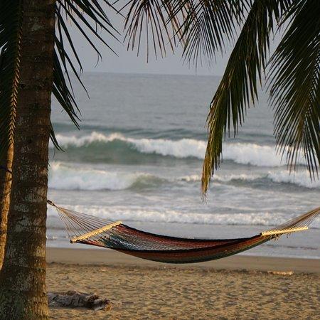 阿爾瑪太平洋海灘溫泉飯店照片