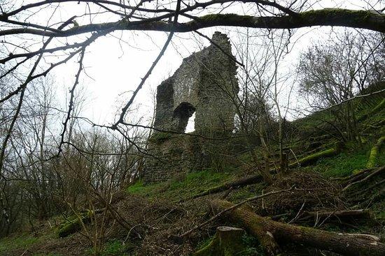 Herefordshire照片