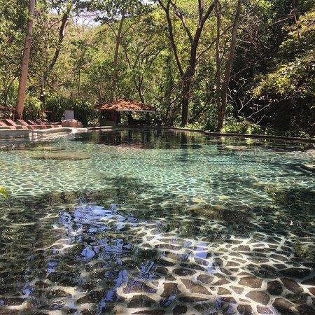 瓜納卡斯特自然保護區照片