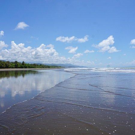 Playa Matapalo, Kosta Rika: photo2.jpg