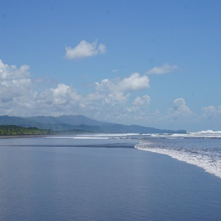 Playa Matapalo, Costa Rica: photo8.jpg
