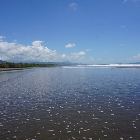 Playa Matapalo, Costa Rica: photo9.jpg