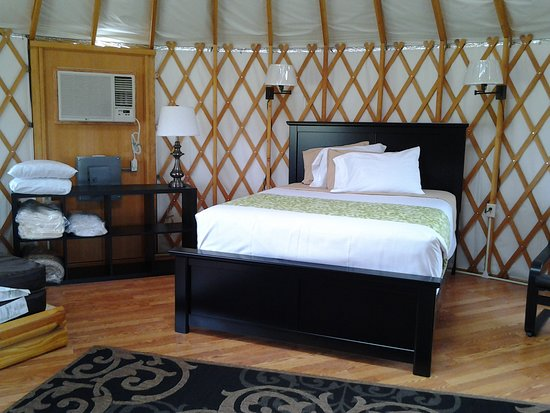 Shelby, OH: Inside of Yurt
