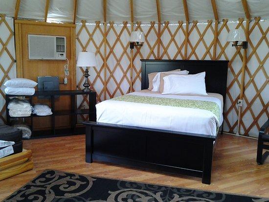 Shelby, Οχάιο: Inside of Yurt