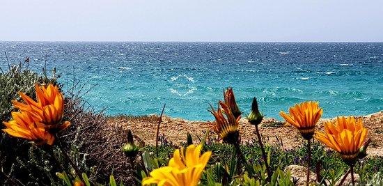 S'Arena Scoada Beach: Tripudio di colori in primavera 😍😍😍