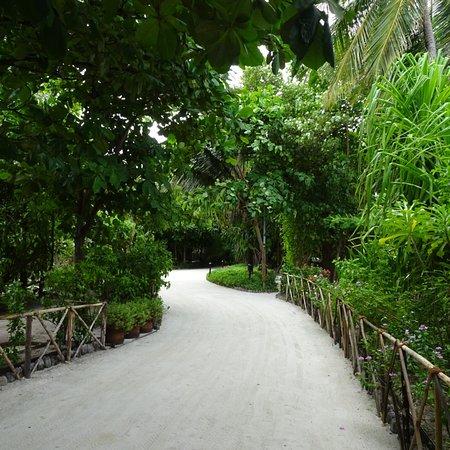더 레지던스 몰디브 사진