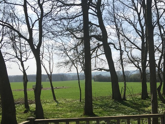 Kingham, UK: View from terrace