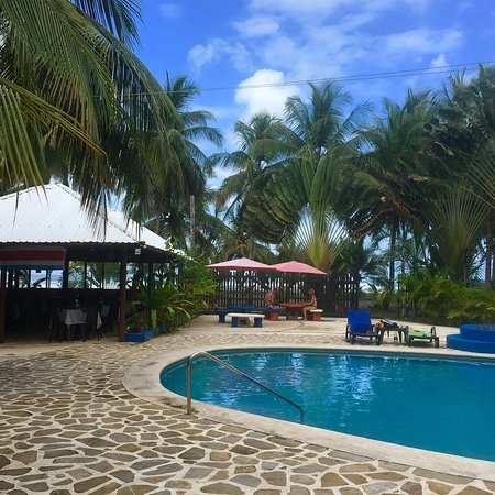 Hotel Playa Westfalia: A wonderful, if slightly rustic place to stay right on the Caribbean.